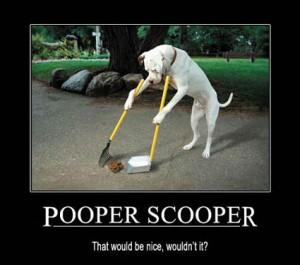 [Image: Pooper-Scooper-300x265.jpg]