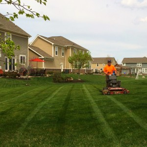 Weekly Lawn Mowing in Fishers, IN