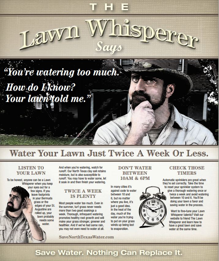 The Lawn Whisperer - am I watering my lawn too much?