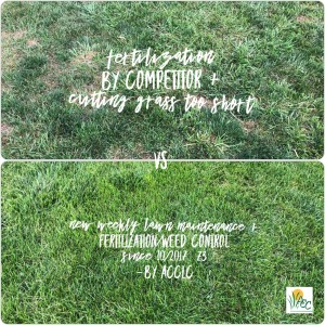 Comparison of ACCLC Lawn Care to others