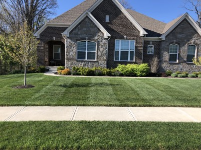 Weekly Lawn Maintenance in Flat Fork, Fishers